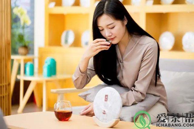 津乔普洱茶