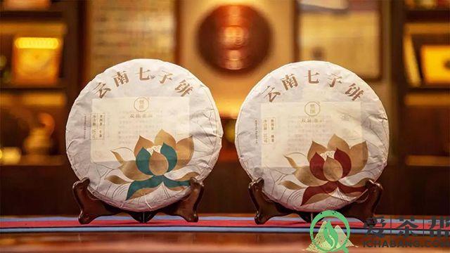 双陈普洱莲饼熟茶