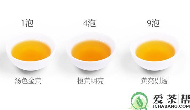 大益沧海普洱生茶茶汤