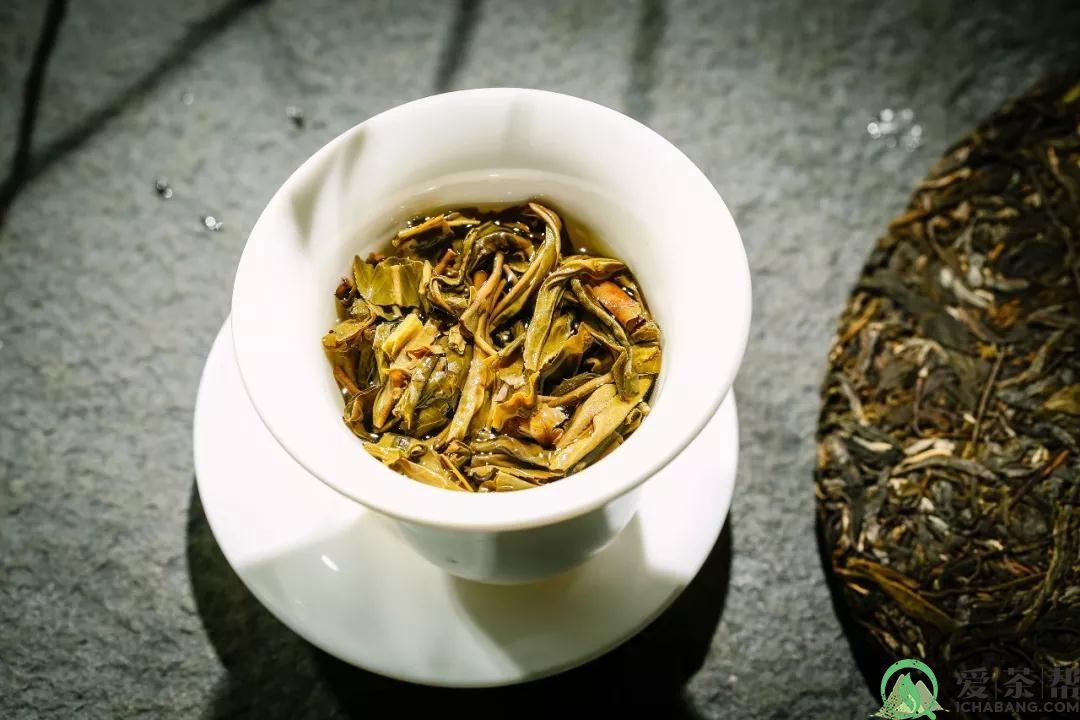 2019中茶绿色孔雀普洱生茶:自然赋予云南的独有吉祥