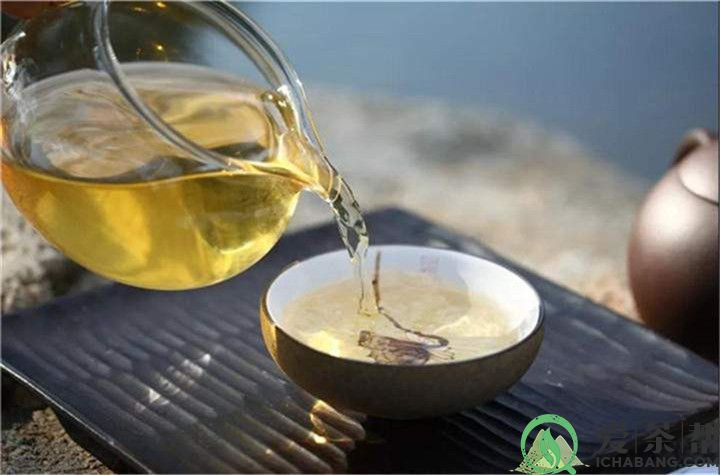 如何让你泡的普洱茶好喝?