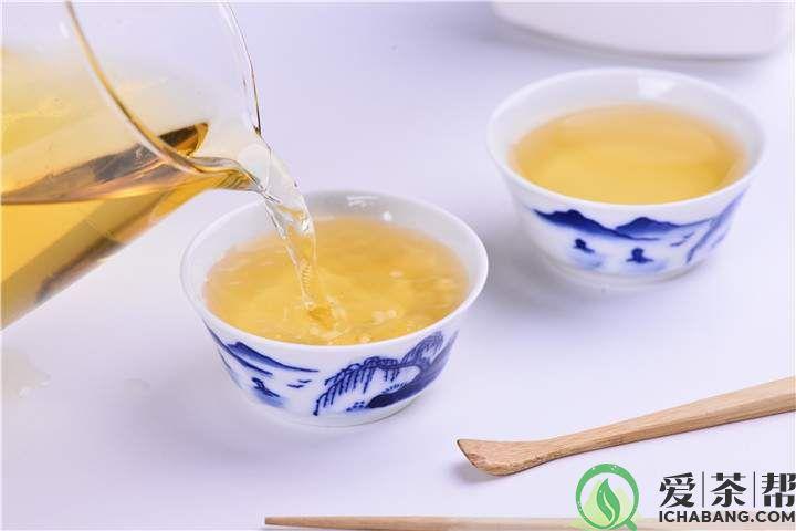 普洱生茶标准冲泡教学