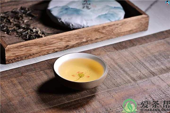 友人分享普洱藏茶心得