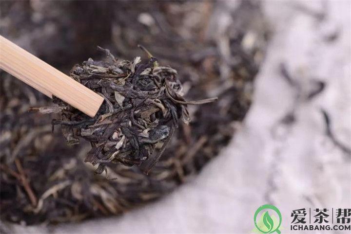 普洱生茶和熟茶谁更利于长期储存呢