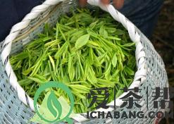 详细的了解茶叶的保质期