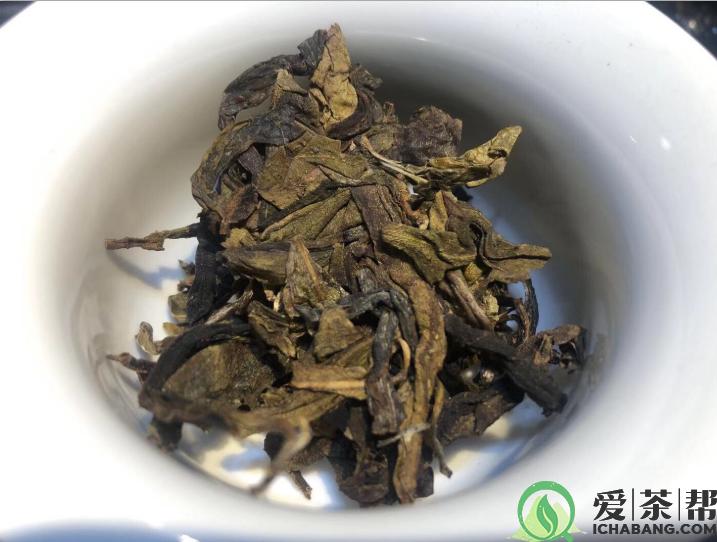 古树普洱茶黄金叶不仅是鉴赏